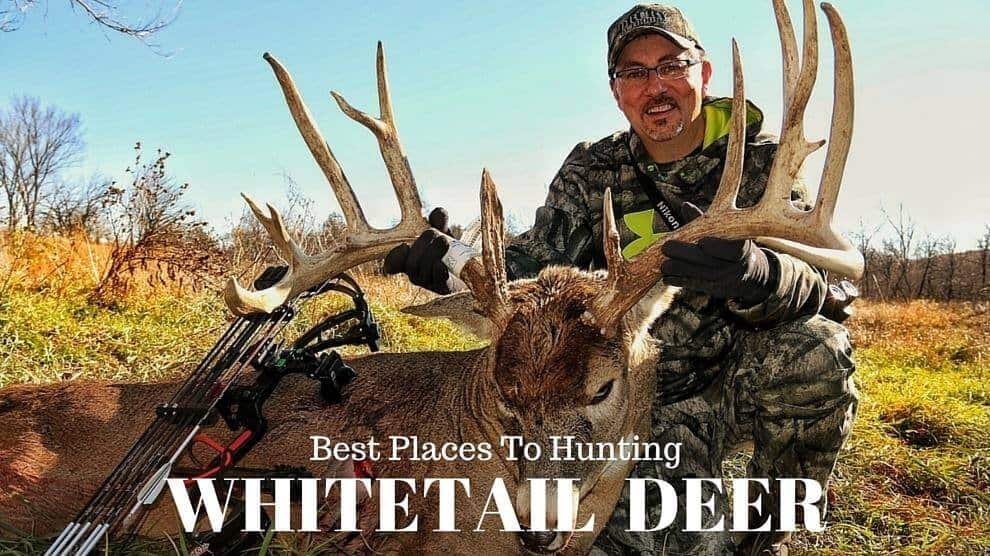 best places to hunt whitetail deer the survival life. Black Bedroom Furniture Sets. Home Design Ideas
