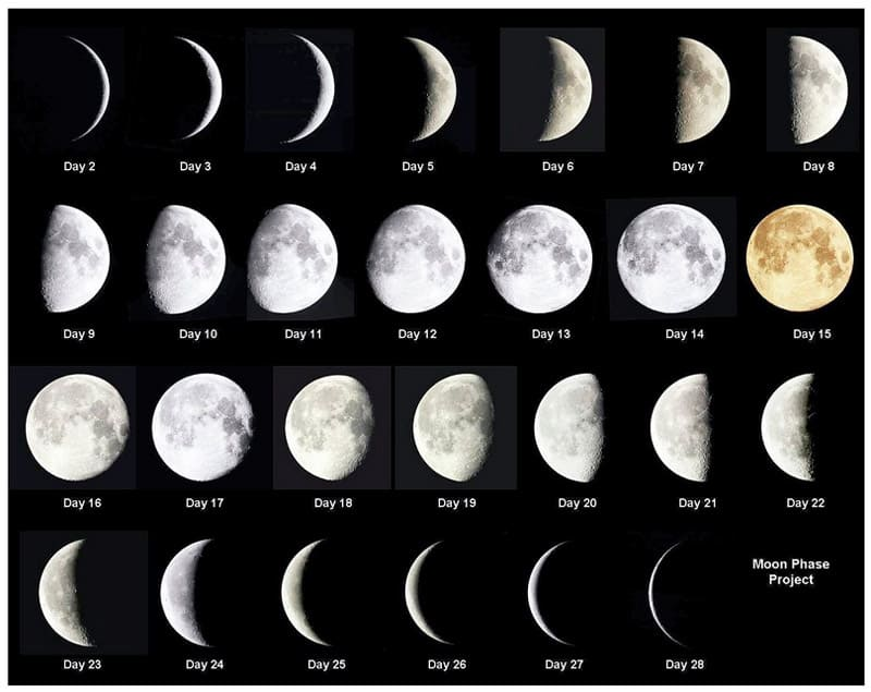 moon phases this week #10