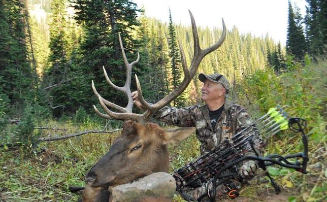 Best Broadheads for Elk