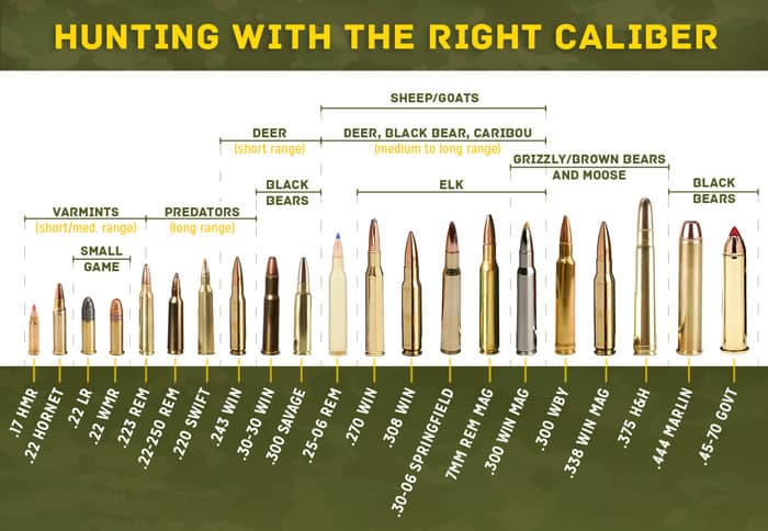 Know Your Caliber