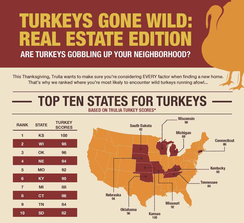 Turkey infographic