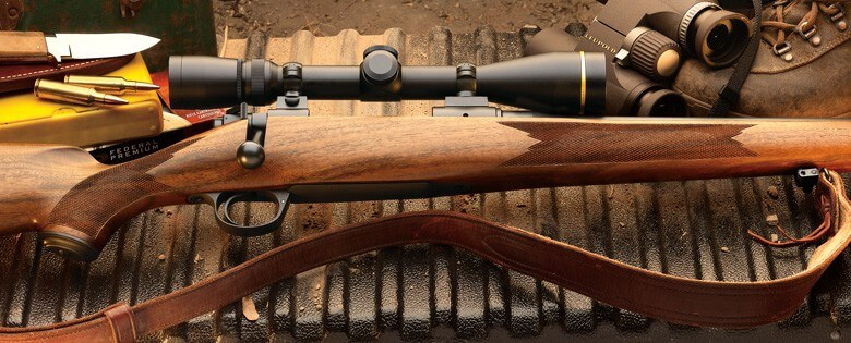 Best Varmint Rifle Buying Guide