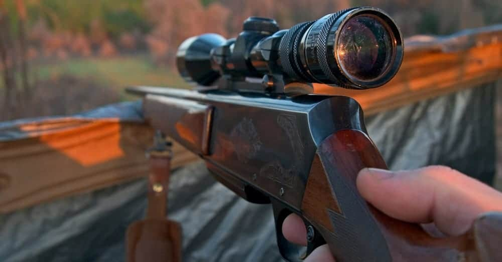 Best Deer Hunting Rifles