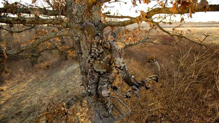 best-climbing-tree-stand