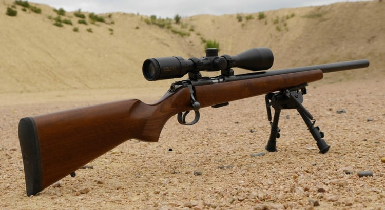 4 Best 17 HMR Rifle for Small and Accuracy Targets (2019)