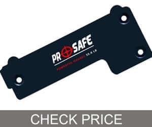 Pro-Safe-Gun-Magnet
