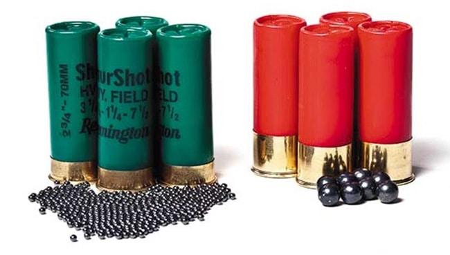 birdshot-vs-buckshot
