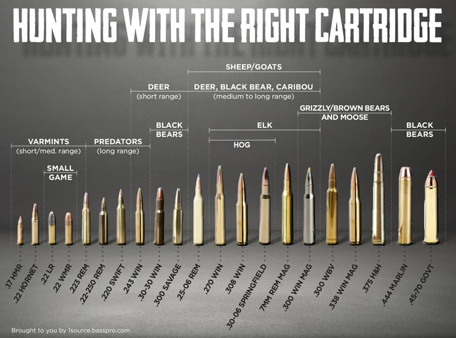 hunting-cartridge-chart